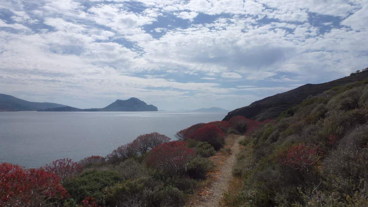 Imprégnée d'une authentique atmosphère des Cyclades, Amorgos est pour ceux qui recherchent la tranquillité, pour les amoureux de la nature et des randonnées à pied